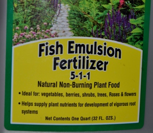 Fish fertilizer.  1 tablespoon per gallon of water means a bottle of this stuff can last for years.