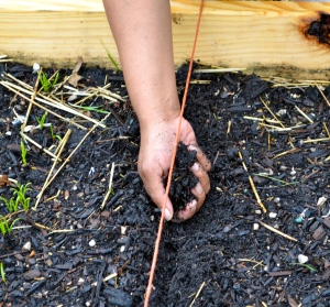Plants seeds by back-filling the opening with soil to the suggested planting depth.  This is not an exact science.