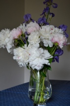 The minor ant colony imported with this bouquet got it evicted from the house not long after this photo was taken.